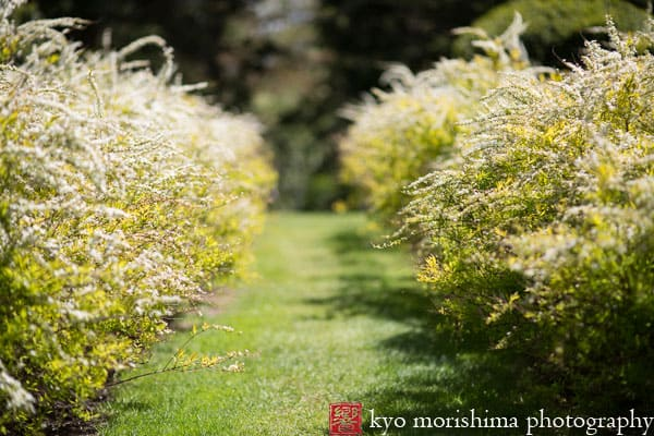 Greenwood Gardens Archives Kyo Morishima Photography