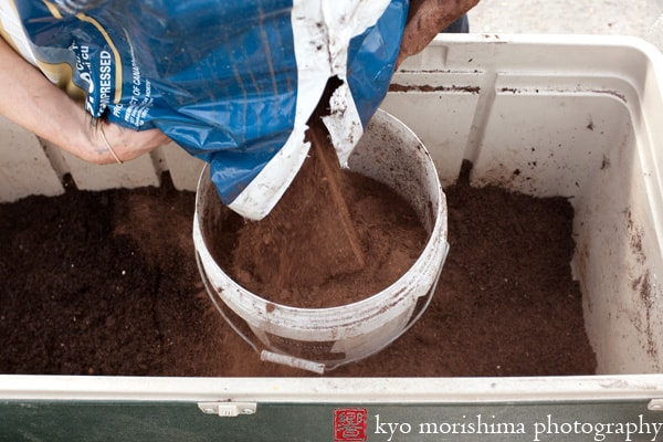 how to make soilless potting mix