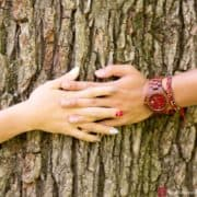 A couple touch hands against the bark of an old oak tree; engagement photo in Central Park NYC photographed by Kyo Morishima