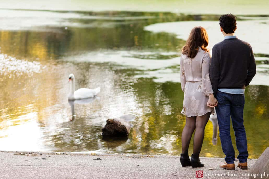 Engagement photo in Prospect Park: couple watches swans in the lake; photographed by Kyo Morishima