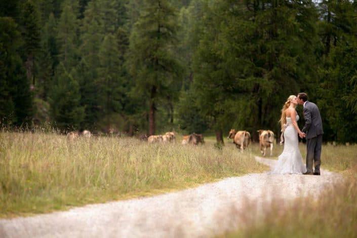 outdoor destination wedding portrait cow alp-schaukaeserei Morteratsch St Moritz Switzerland