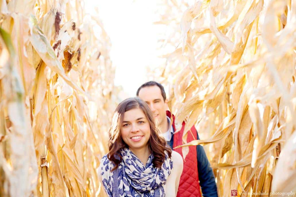 Farm engagement photo NJ: a couple walks down a cornfield path at Terhune Orchards in Princeton